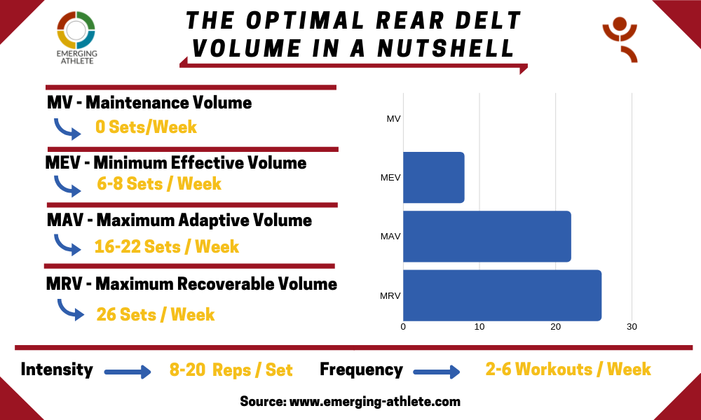 Table showing the Optimal Rear Delts Volume