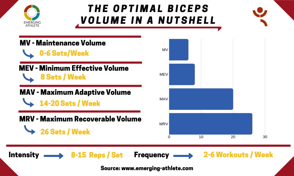 Table showing the Optimal Biceps Volume parameters