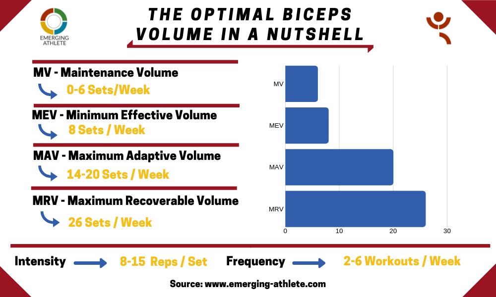 Table showing the Optimal Biceps Volume parameters