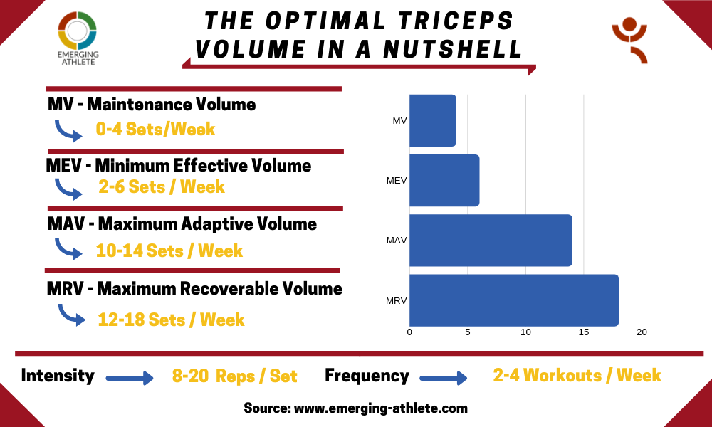 Table presenting the optimal triceps volume parameters