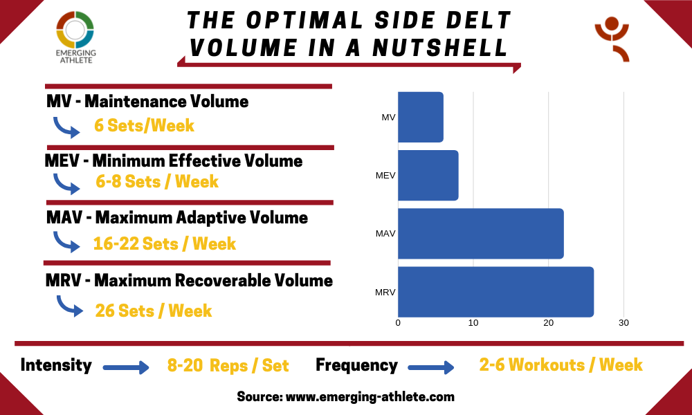 Table constituting the Optimal Side Delt Volume