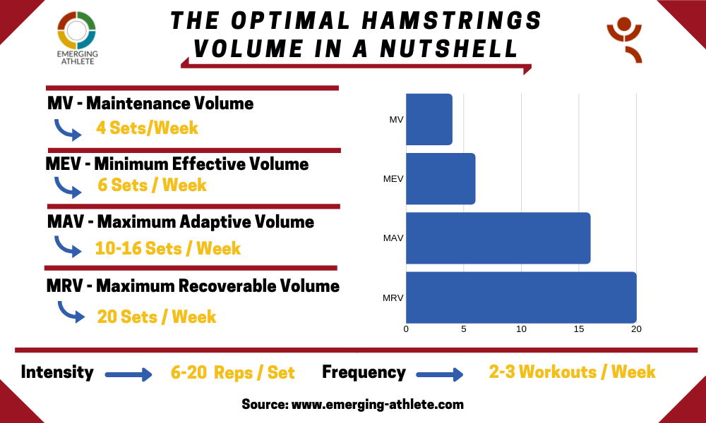 Tabling showing the Optimal Hamstrings Volume landmarks