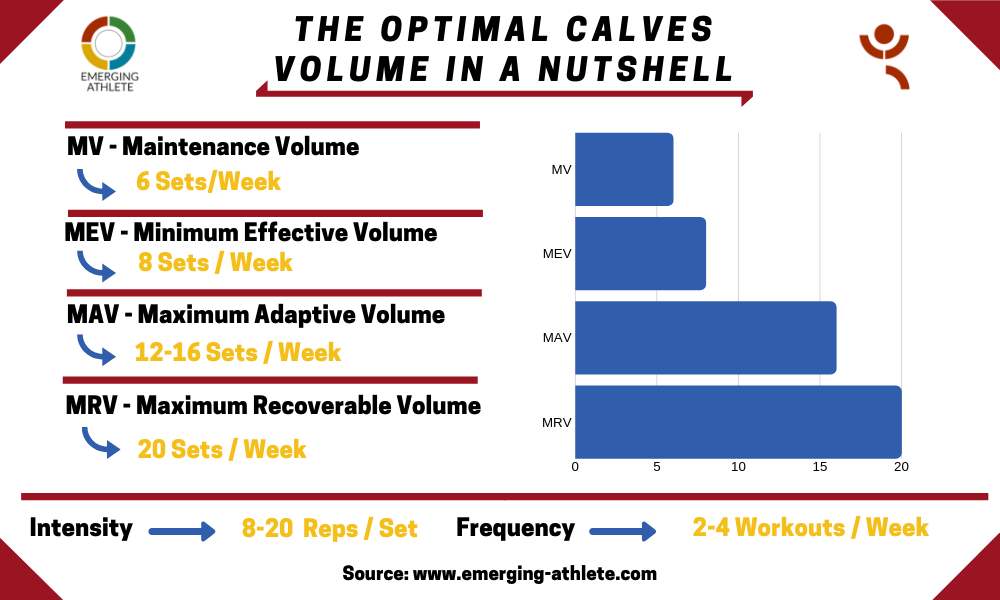 Table depicting the Optimal Calves Volume