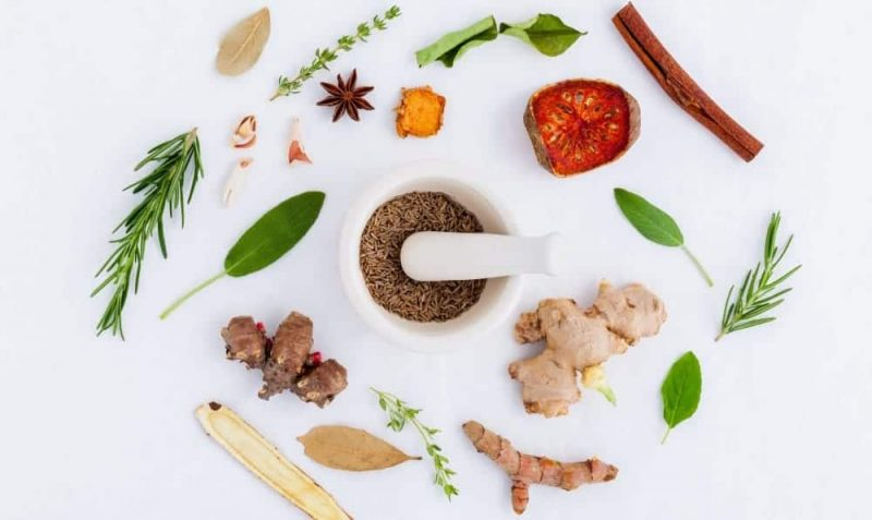 Ginger and Other Herbs and Ginkgo Biloba for Better Memory