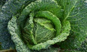 Benefits of Potassium Thumbnail (1)