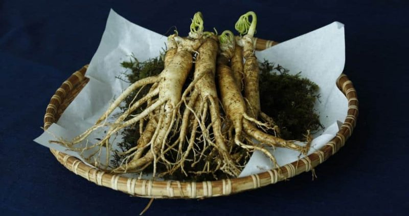 Raw Ginseng for Lower Stress