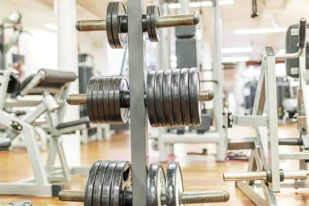 Weights to increase progression in a Full-Body Workout Plan For Beginners